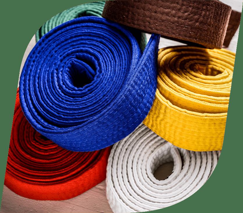 Système de ceintures